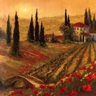 Poppies Of Toscano I by Art Fronckowiak art print